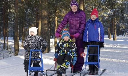 Финские сани